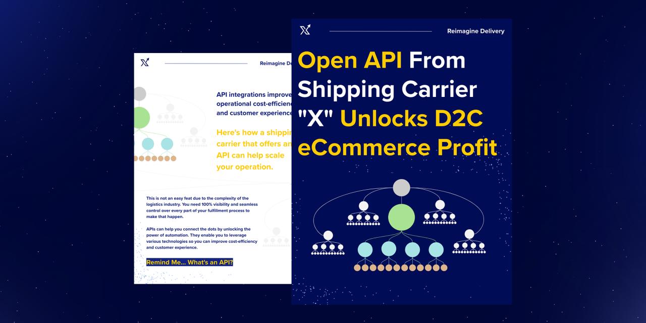 X Delivery - API - Benefits of API